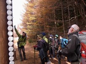 紅葉の富士山原始林を下山トレッキング
