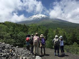 春の須走口・小富士ハイキング