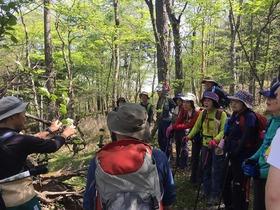 2017 春の須走口・小富士ハイキング