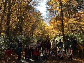 秋の樹海・下山トレッキング(Vol.2)