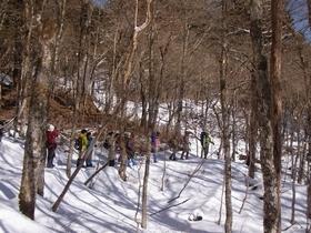 富士山腹スノーハイク~冬の森で遊ぼうvol.2