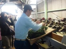 静岡茶発祥の山里で茶農家入門2011.04.29 その2