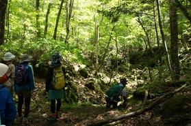 「頂上を目指さない富士山ツアー」が始まります!