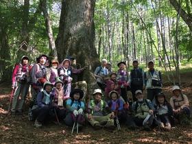 「頂上を目指さない富士山ツアー」はオーダーメイドでもお承りします!