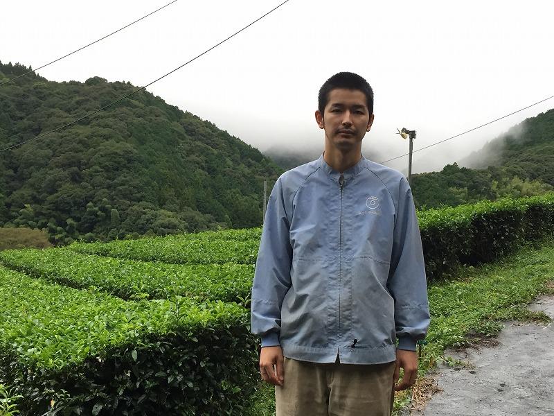 静岡 県 黄色い お茶