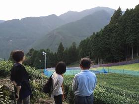【川根本町】 つちや農園