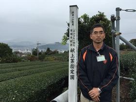 【静岡市】マル清漆畑製茶