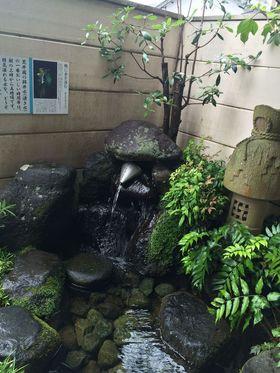 【御殿場市】荒井園