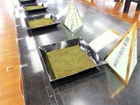 静岡県茶品評会 出品茶入札販売会へ潜入ツアー
