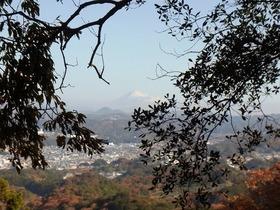 しずおか・低山ハイキングツアー 掛川・小笠山
