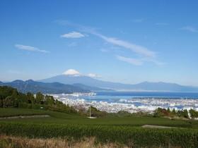 【A】静岡・清水 お茶の歴史とちゃっきり節めぐり
