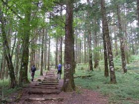 山歩きはじめの一歩 紅葉のブナの森西臼塚ハイキング