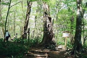 新緑の西臼塚でピクニック~山歩きはじめの一歩~