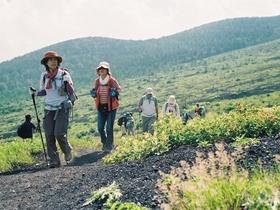 【頂上を目指さない富士山】水ヶ塚~御殿場口ハイキング