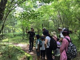 【頂上を目指さない富士山】山歩きはじめの一歩  高鉢~西臼塚ピクニック